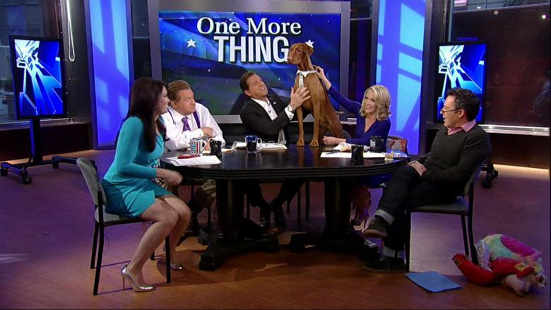 'The Five' Hosts Celebrate Jasper's 2nd Birthday! | Fox News Insider