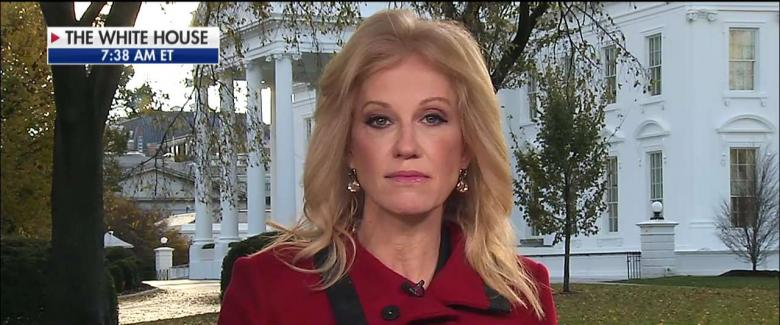 White House counselor Kellyanne Conway said President Trump won't rule out shutting down the government over funding for his long-promised wall along the U.S.-Mexico border.